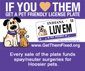 Get a Pet-friendly license plate